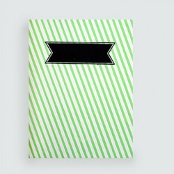 "L'écolier ""rayer vert fluo""cahier dahu édition serigraphie green"