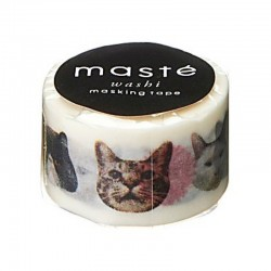 masking tape cat face masté